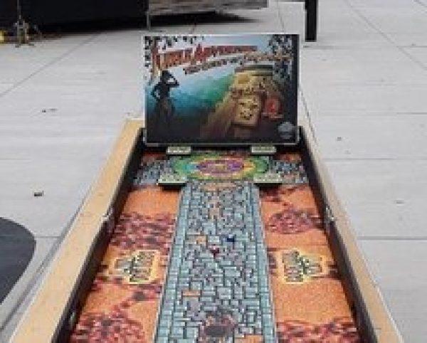 Jungle Shuffleboard Carnival Game