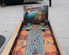 jungle_shuffleboard